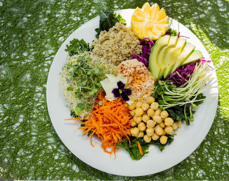 Mediterranean-Vegan-Kale-Salad-Recipe .jpg