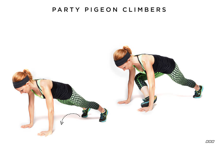 Whip-Yo-Self-Party-Pigeon-Climbers