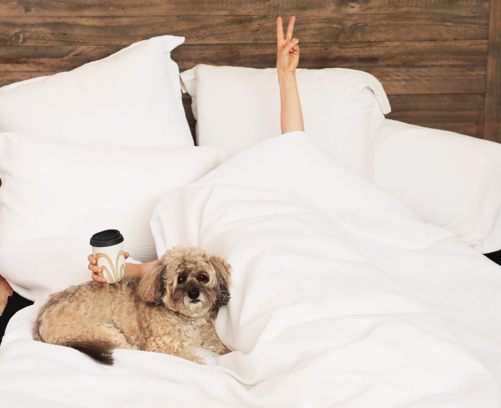 Is This Why You're Not Sleeping Well? 5 Easy Fixes!